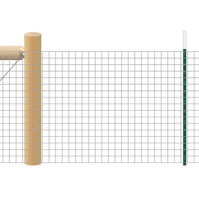 T Posts + Wood Bracing